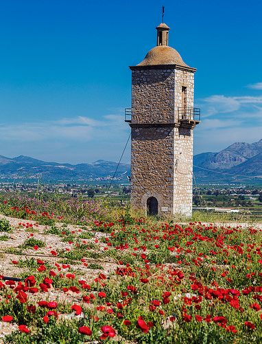 An old tower surrounded by poppies amongst the castle ruins in Nafplio, Greece.