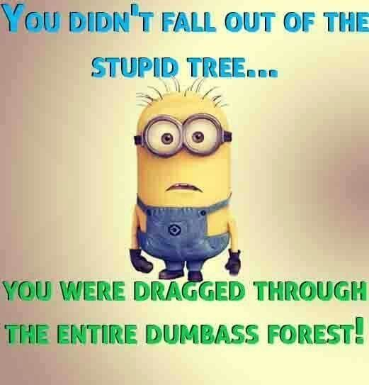 33 Minion Quotes For Nearly Everyone