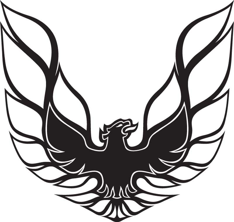 Trans AM Muscle Car Coloring Pages | Firebird Car Decal 2 | Stuff ...
