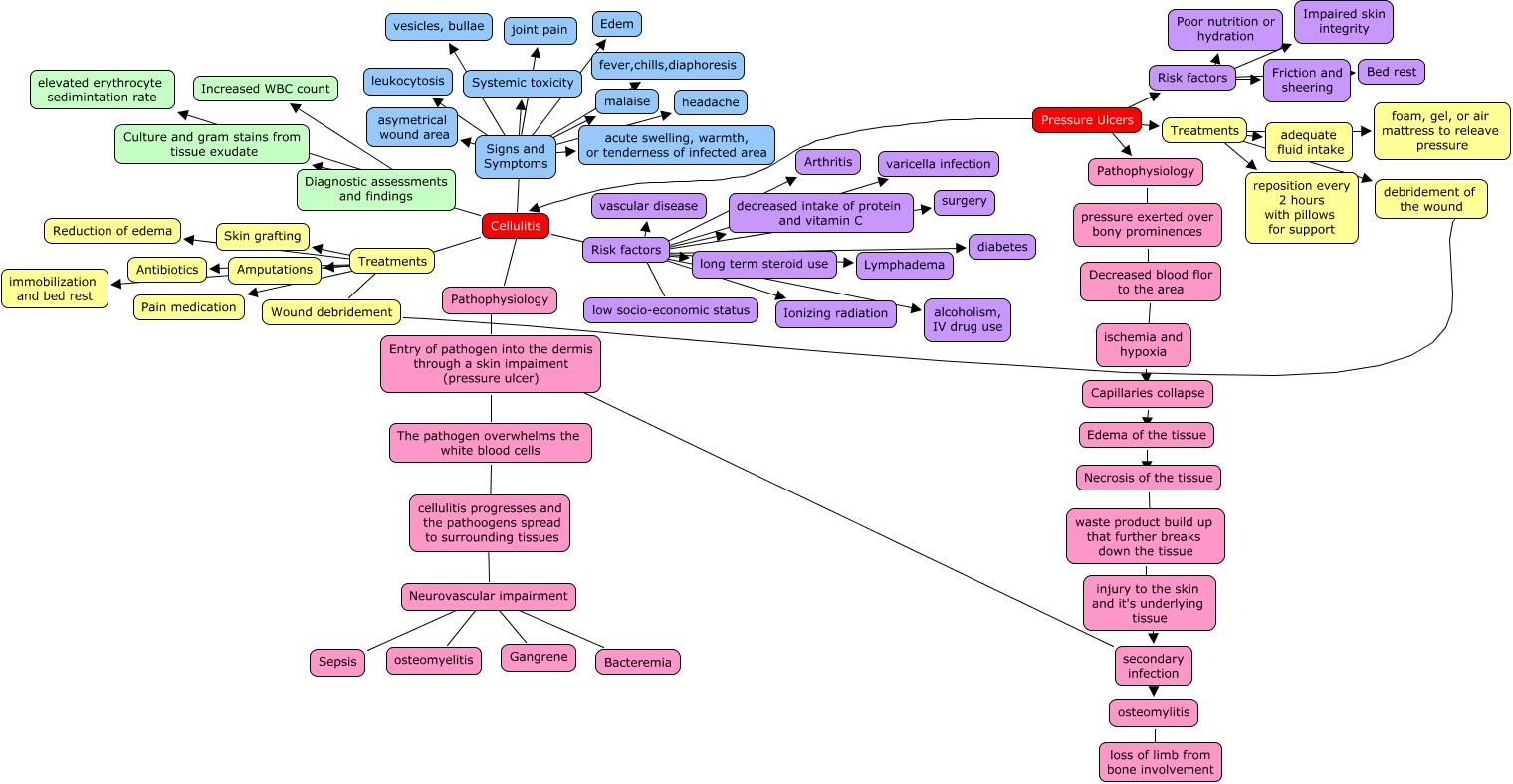 Cellulitis Pathophysiology Nursing Concept Map Foot Remedies