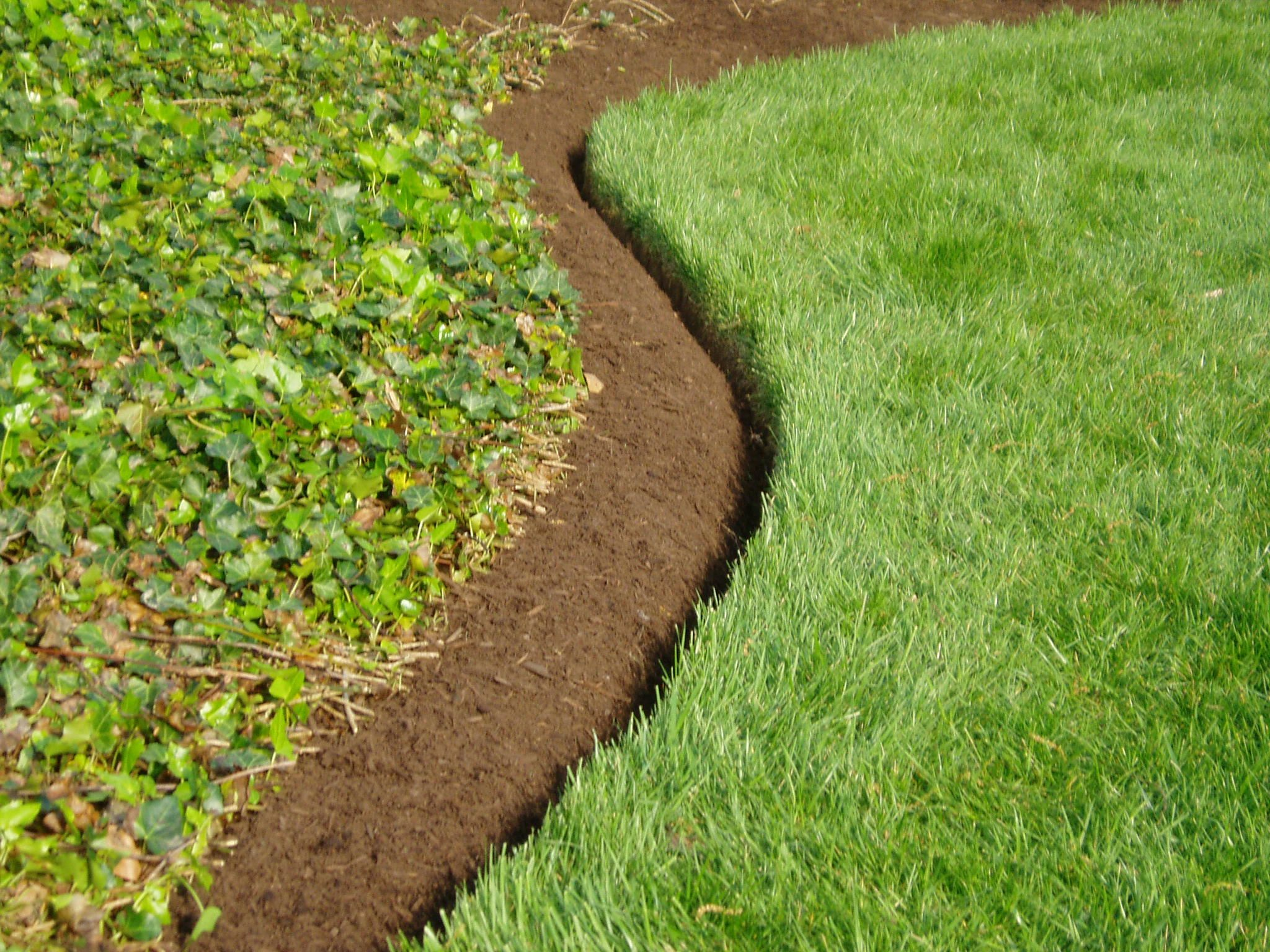The best landscape edging to install around your flower for Grasses for garden borders