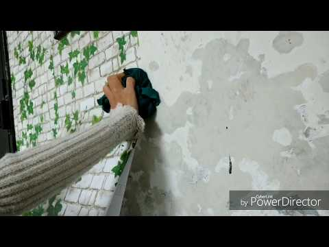 Gave Your Wall A Designer Look How To Paste Self Adhesive Wallpaper Pvc At Home Tulikajagga Youtub Self Adhesive Wallpaper How To Apply Wallpaper Wallpaper