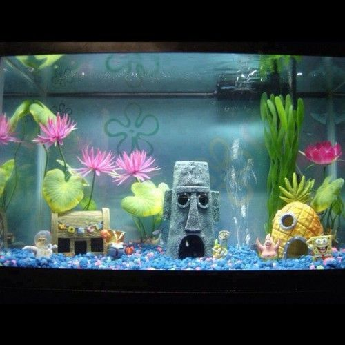 Cool fish tanks migdymimi spongebob fish tank for Awesome fish tanks