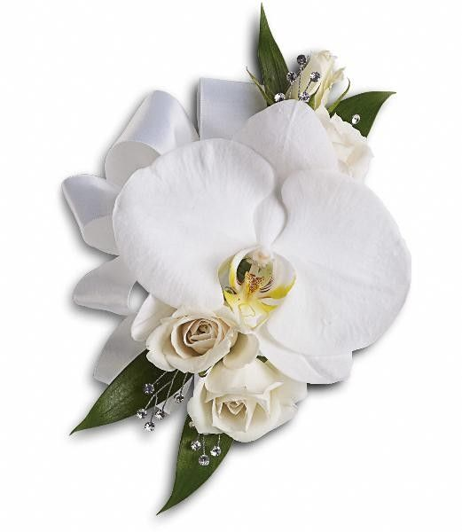 White Orchid and Rose Corsage - A lovely white phalaenopsis orchid with white spray roses and Italian ruscus.