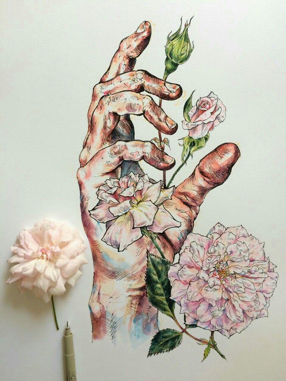 Pin by chan mongsum on illustration pinterest illustrators
