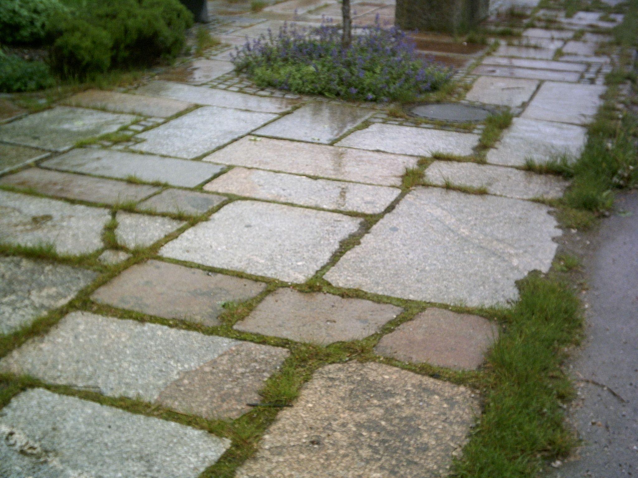 gredplatten granum natursteine gmbh gredplatten stellplatz ideen terrasse betonieren. Black Bedroom Furniture Sets. Home Design Ideas