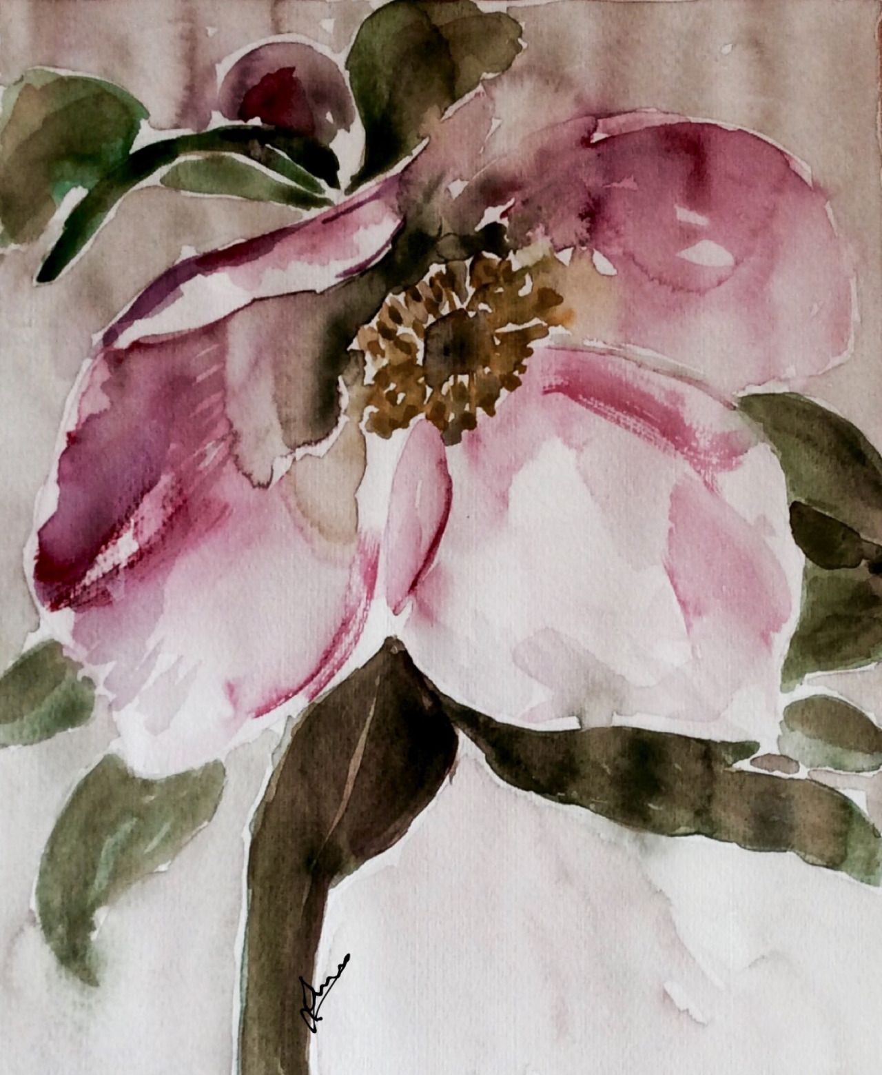 Christmas Rose Made With Watercolour In My In 2020