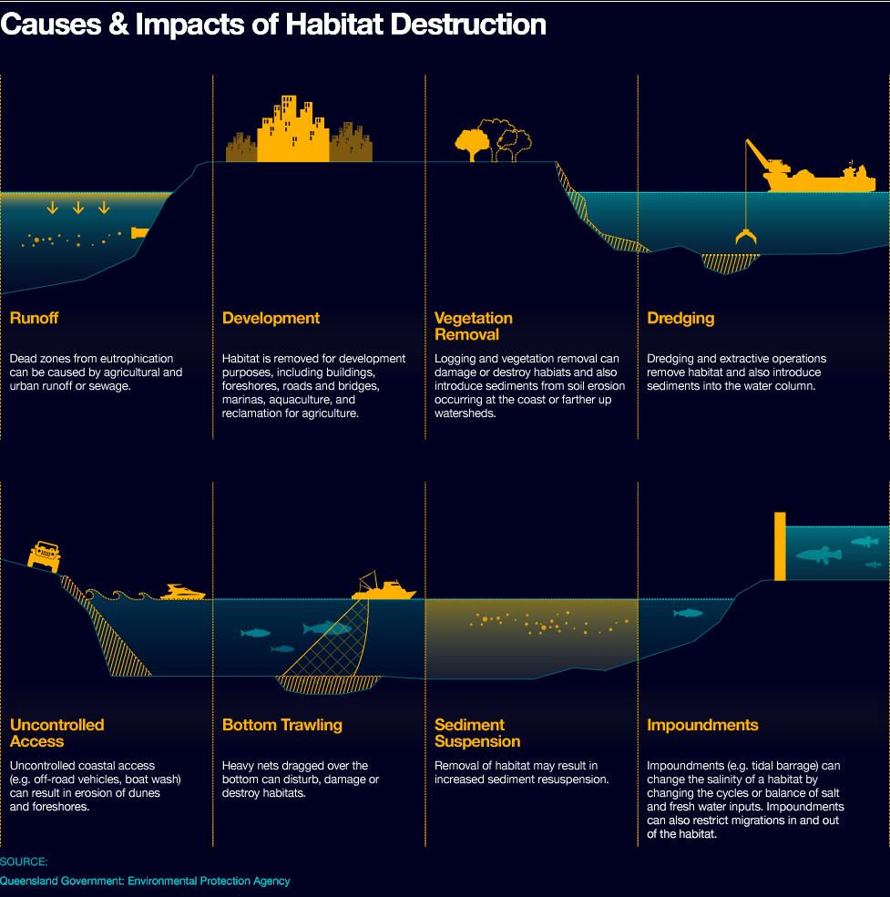 Pressure Graph Of Ocean Floor Noaa Ocean Explorer Sounds