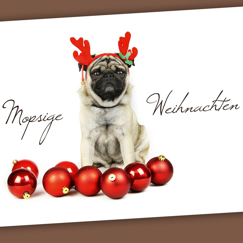 Mops Bilder Weihnachten.Postkarte Mopsige Weihnachten Mops Möpse Mopsliebe Pug Pugs