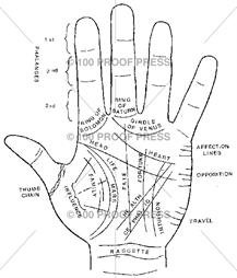 Anatomy Skeletons Palmistry Hand Palmistry Vedic Astrology Hast jyotish ancient eastern system of palmistry. anatomy skeletons palmistry hand