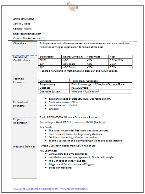 professional curriculum vitae    resume template for all job seekers sample template of an