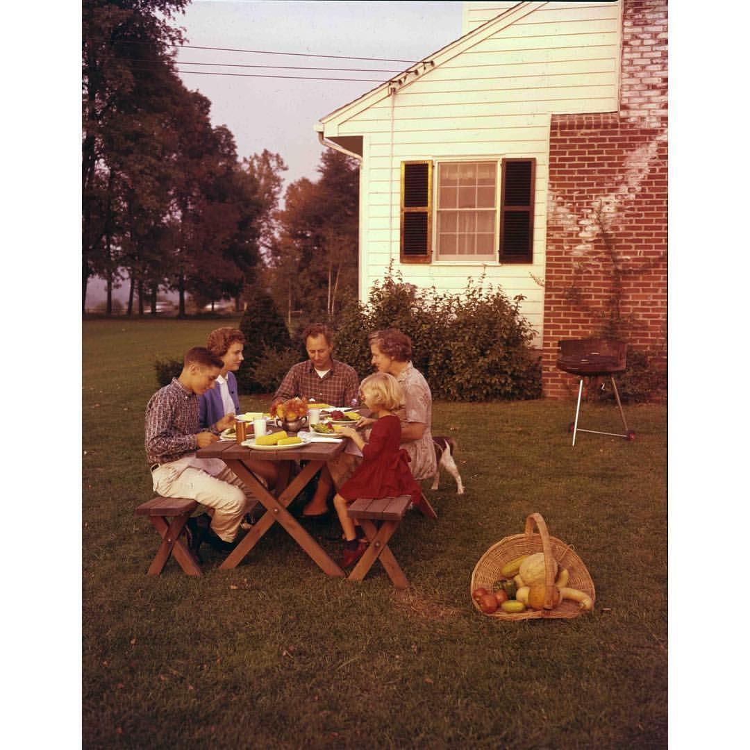 Planning A Backyard Barbecue? The Suburban Backyard As We