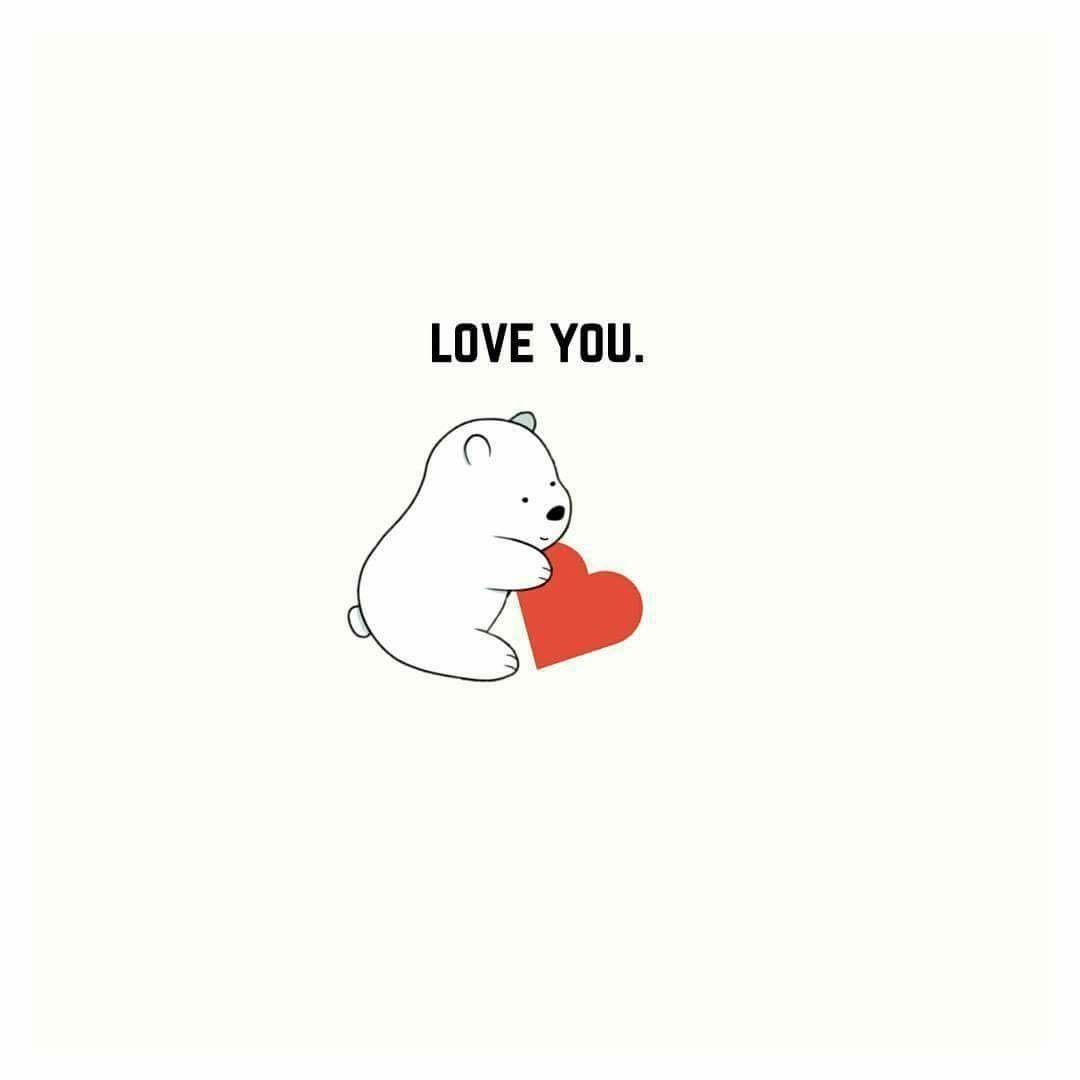 Ice Bear Gấu xám, Đang yêu
