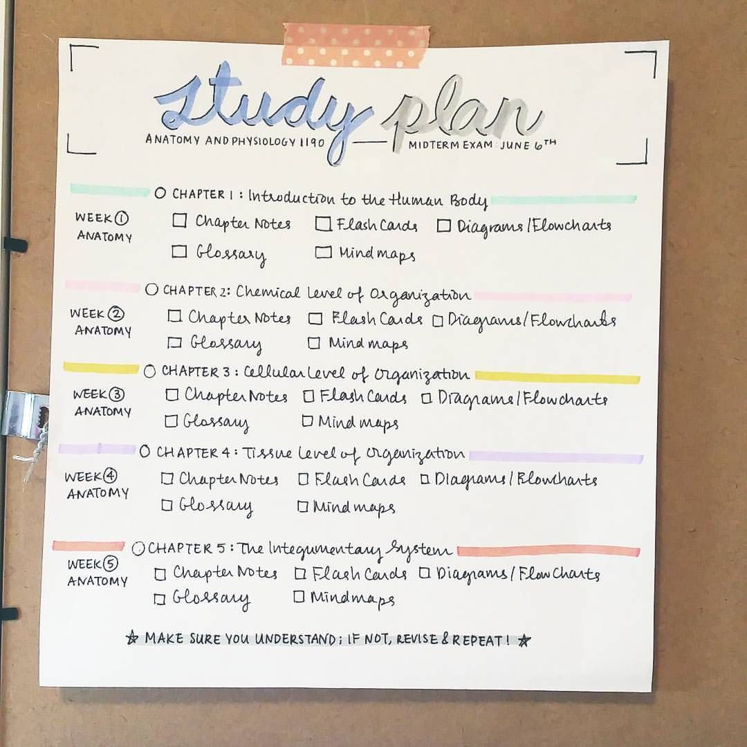 "studyallure: "" My study plan for an upcoming midterm on anatomy and ..."