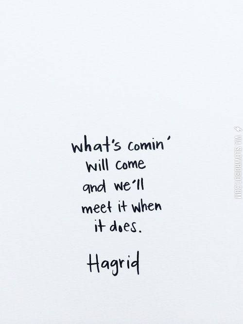 Advice From Hagrid Words Quotes Words Quotes