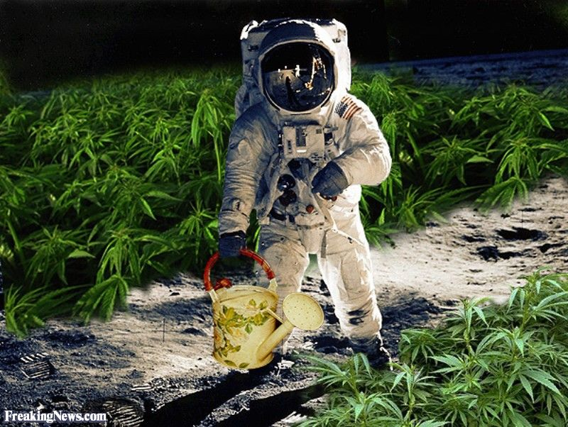 ELG MUZIK GREWP: NASA to Grow Marijuana on the Moon   New 2015