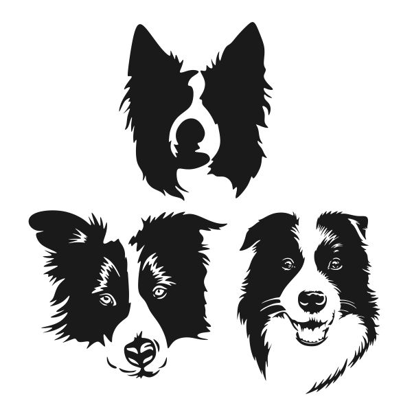Border Collie Motif A6 Black Soft Touch Journal Father Mothers Useful Xmas Gift