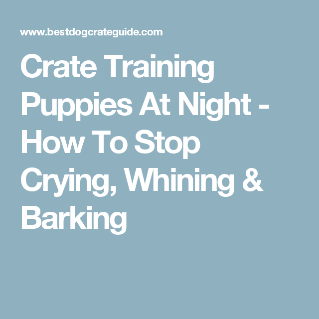 Crate Training Puppies At Night How To Stop Crying Whining