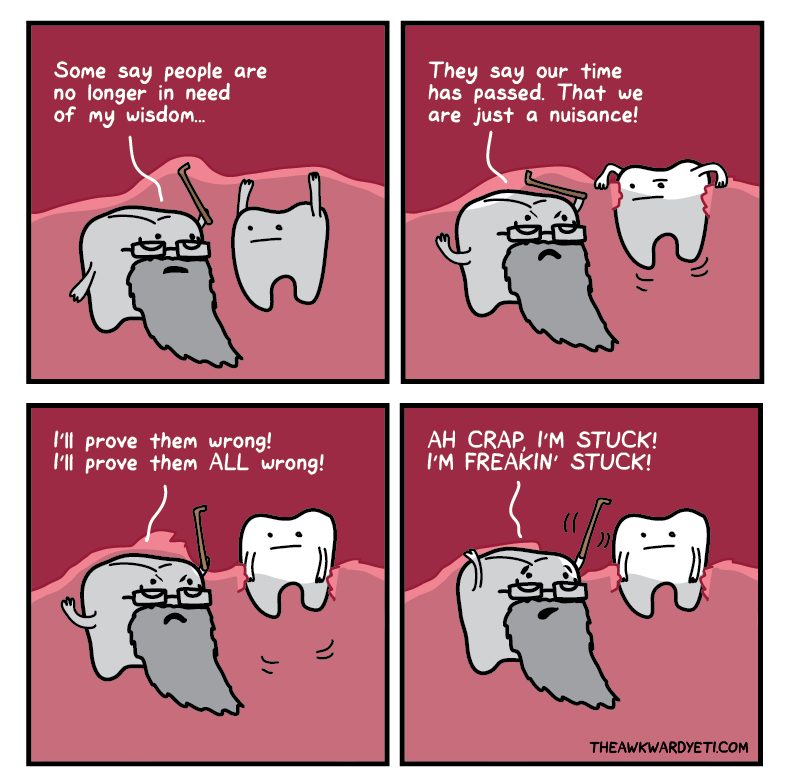 6c4a78c8075f0b4601657274ddf164ff wisdom tooth whats going on in my mouth right now funny things