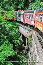 Resultado de imagem para trem entre morretes e curitiba
