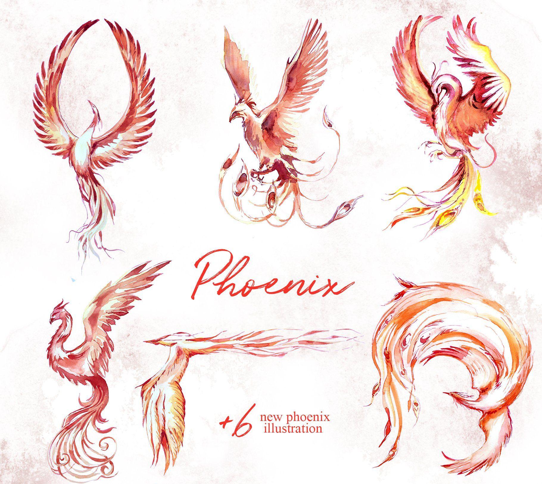 Watercolor Phoenix Clipart Set