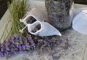 Lavendel Tegen Motten Lavendel Handige Tips En Tips