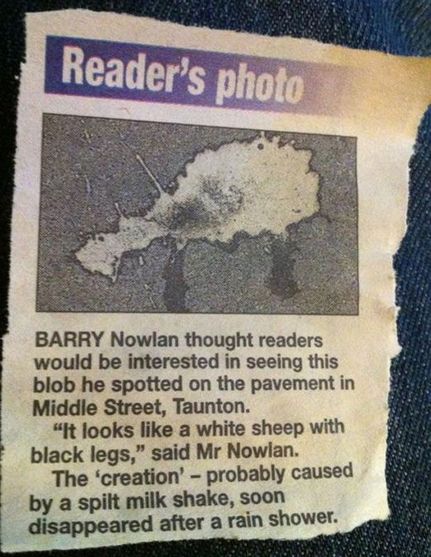 47 Hilariously Underwhelming Local News Headlines Funny News