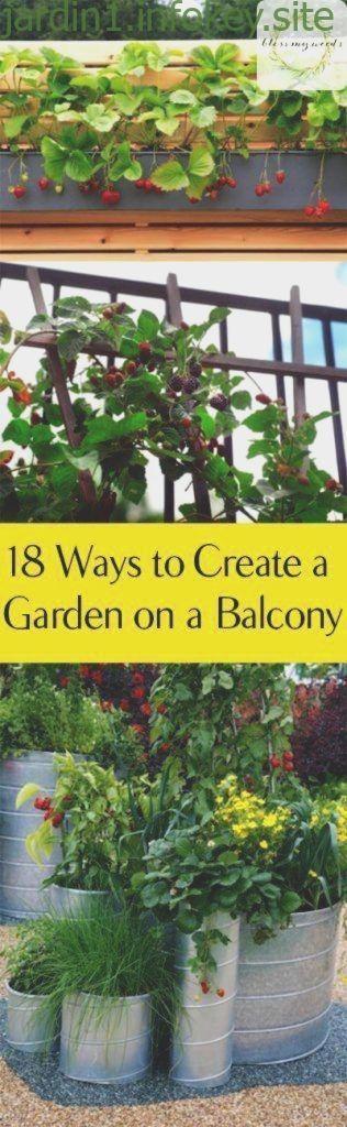 Beginners Gardening Indoor Reddit Tips Indoor Gardening Tips
