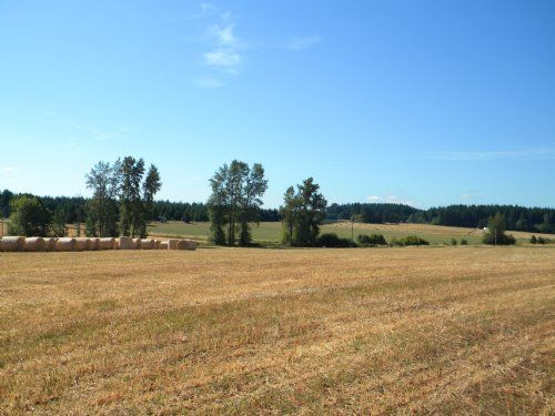 21 Acres $155,900 X Roth Rd. in Lewis County, Washington is a 21 acre farm for sale in Winlock, Washington, 98596.