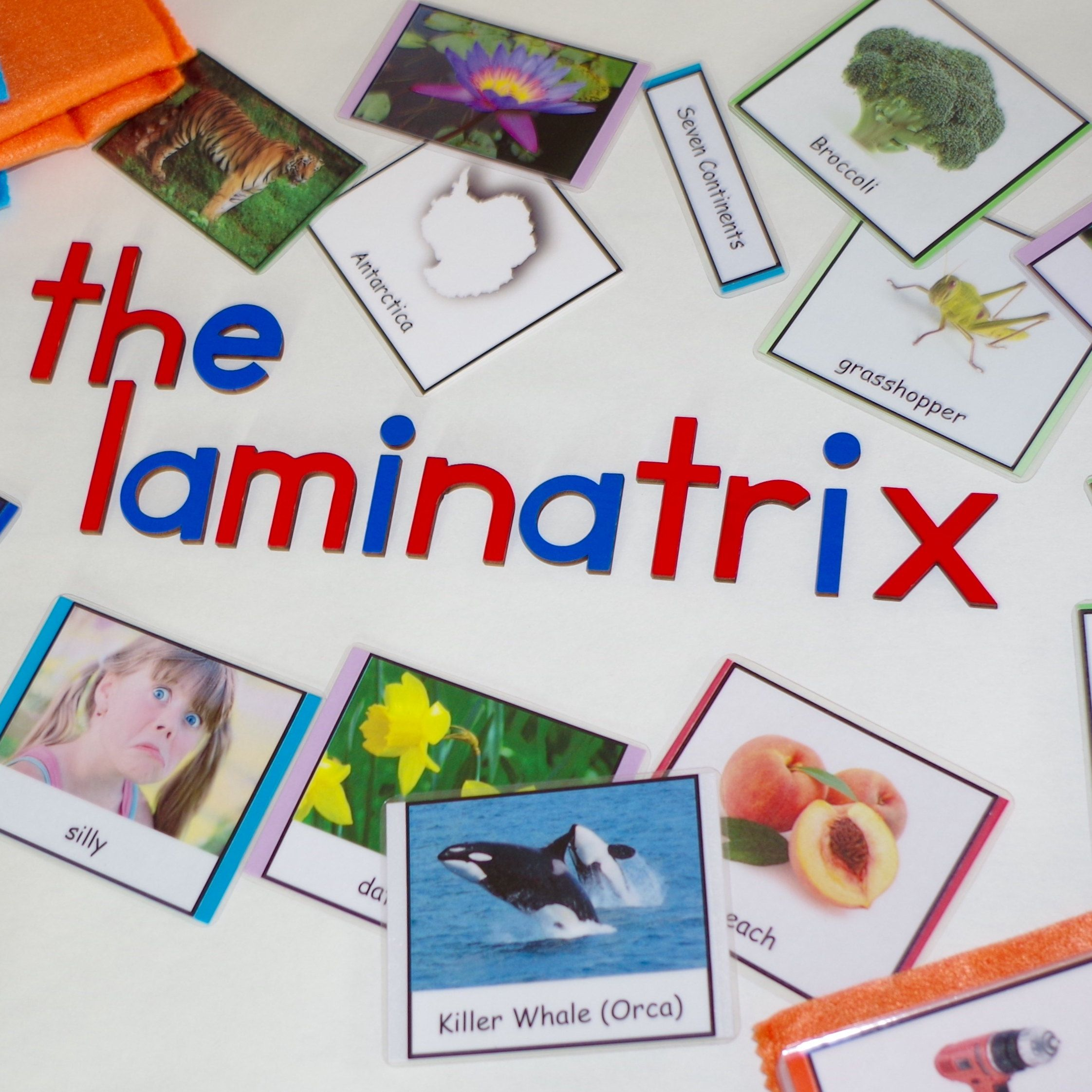 Browse Unique Items From TheLaminatrix On Etsy, A Global