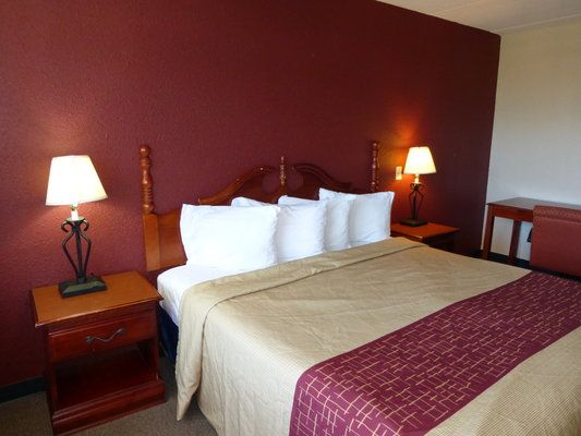 Cheap, Pet Friendly Hotels in Kenly, NC | Stay With Red Roof | Pet