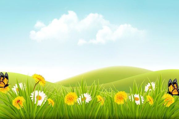 Summer Landscape Background  Photoshop Textures | Photoshop Textures