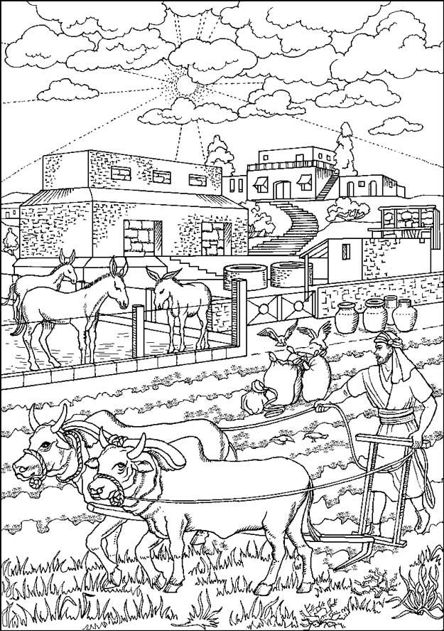 Gl Rijke Dwaas Luk 12 16 Jpg 625 887 Bible Coloring Pages