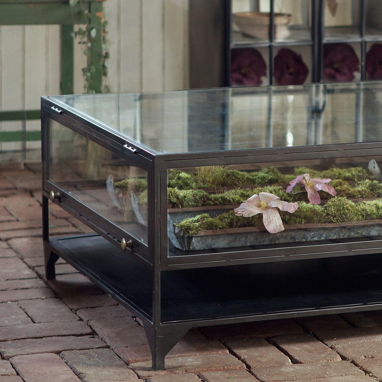 Curio Display Coffee Table Iron And Glass Terrarium Table