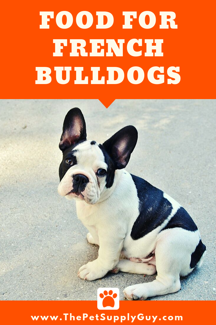 Best Food For A French Bulldog With A Sensitive Stomach Best Dry Dog Food French Bulldog Bulldog