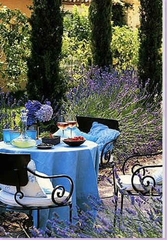 A moment's respite from the heat of the Summer. A lovely table covered in blue, set amidst the lavender, makes a charming setting for an early evening apéritif in Provence