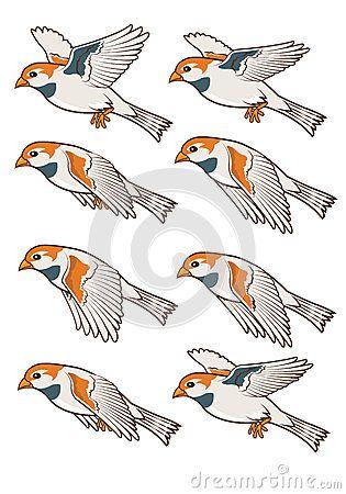 Blue Jay Bird Flying Sequence Flying Bird Drawing Birds Flying Cartoon Birds