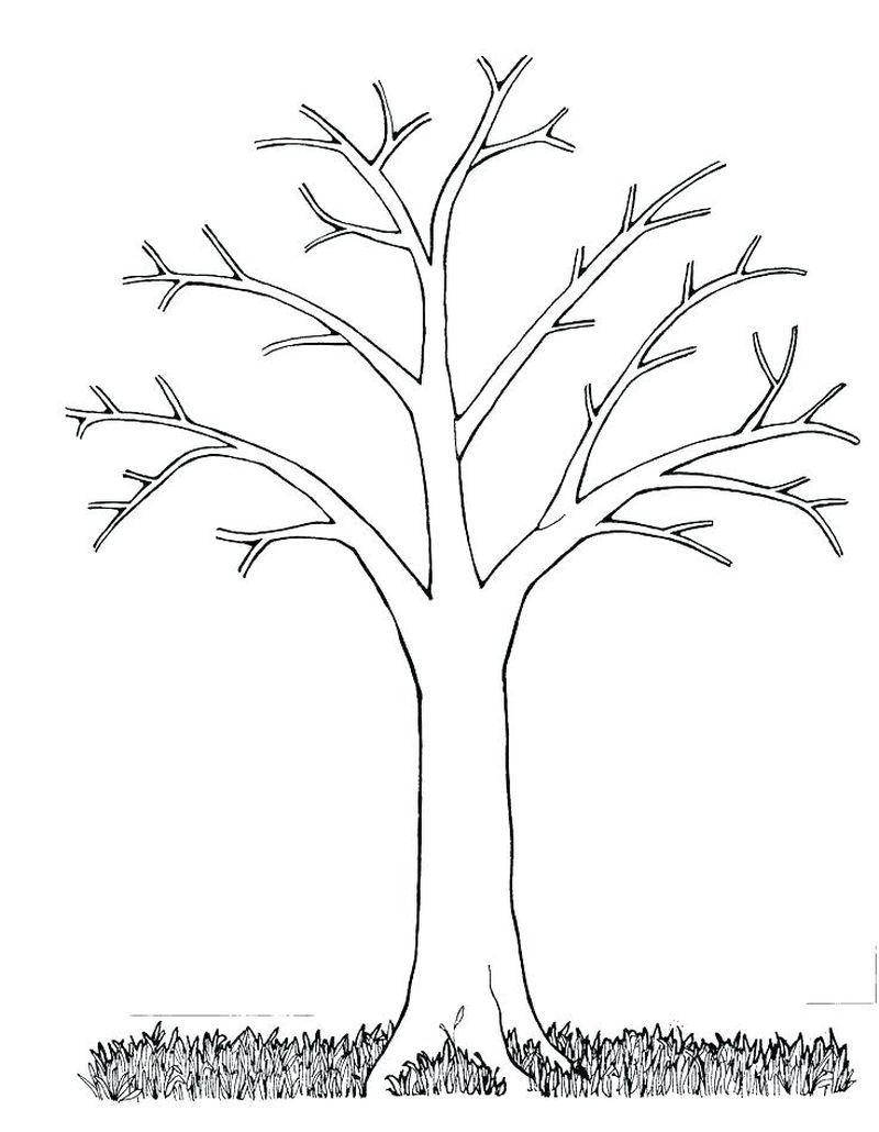 Tree Coloring Pages Ideas For Children Free Coloring Sheets Tree Coloring Page Leaf Coloring Page Tree Outline