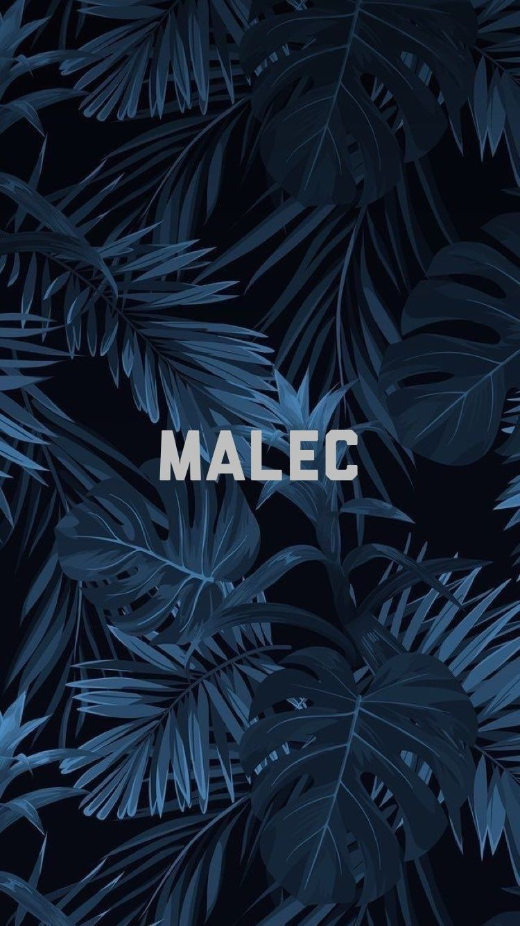Malec shadowhunterswallpaper alec magnus shadowhunters