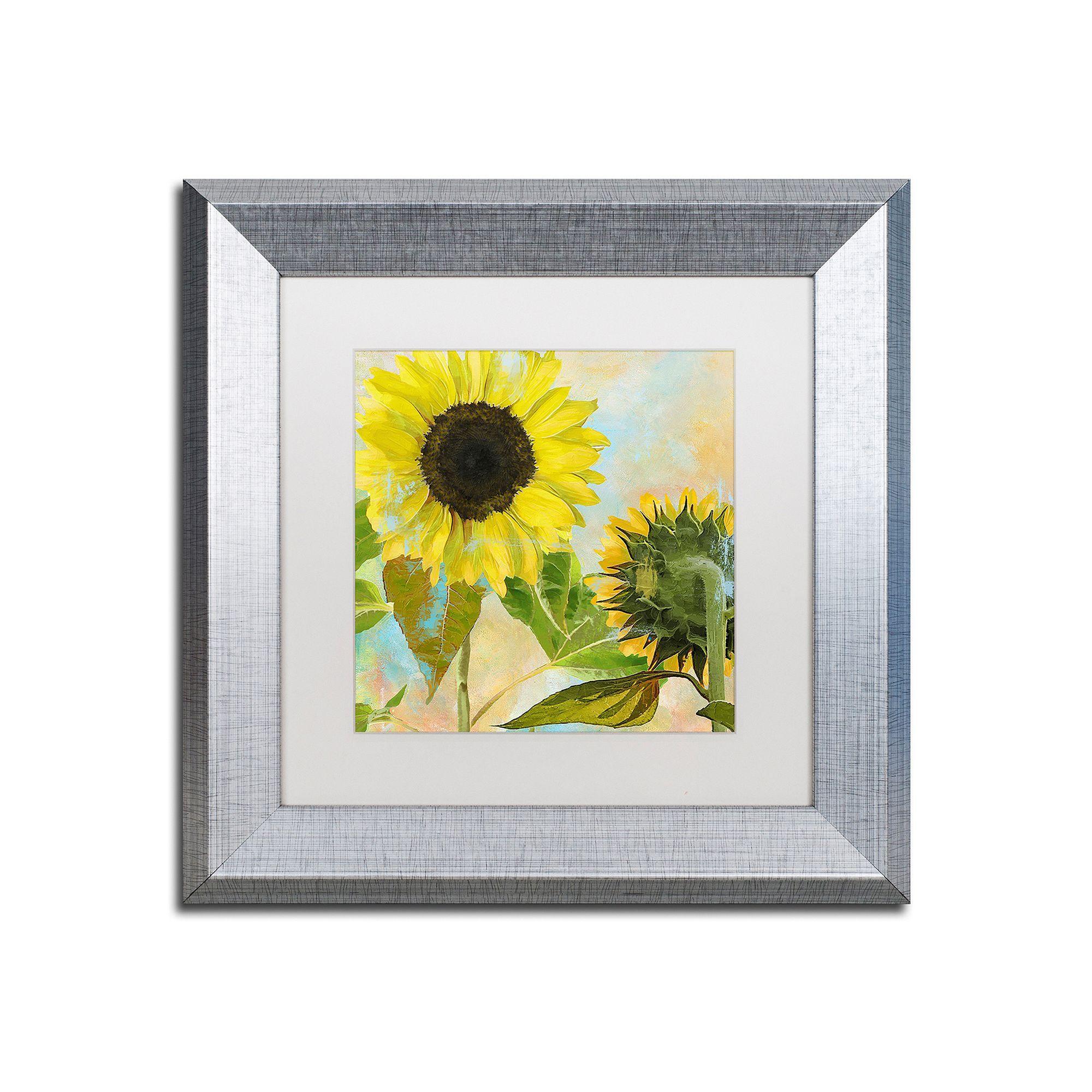Trademark Fine Art Soleil I Silver Finish Framed Wall Art, Black ...