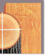 why choose rift and quarter sawn board