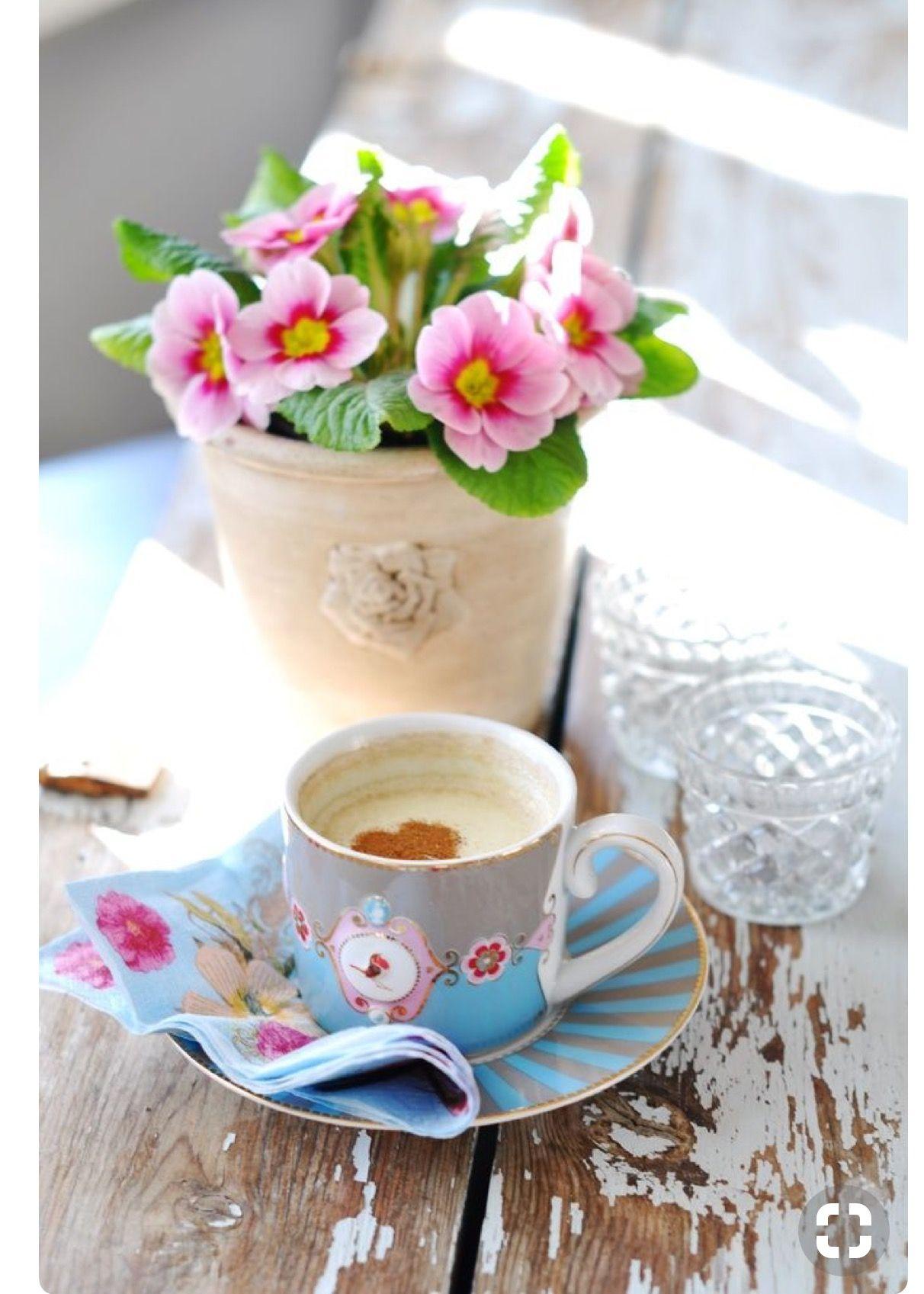 Pin by Веска Туджарова on Coffee ☕ Good morning coffee