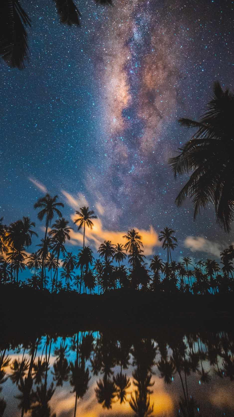 Palm Trees Starry Sky Milky Way Stars Night Wallpaper Pictures Cool Backgrounds Beautiful Places
