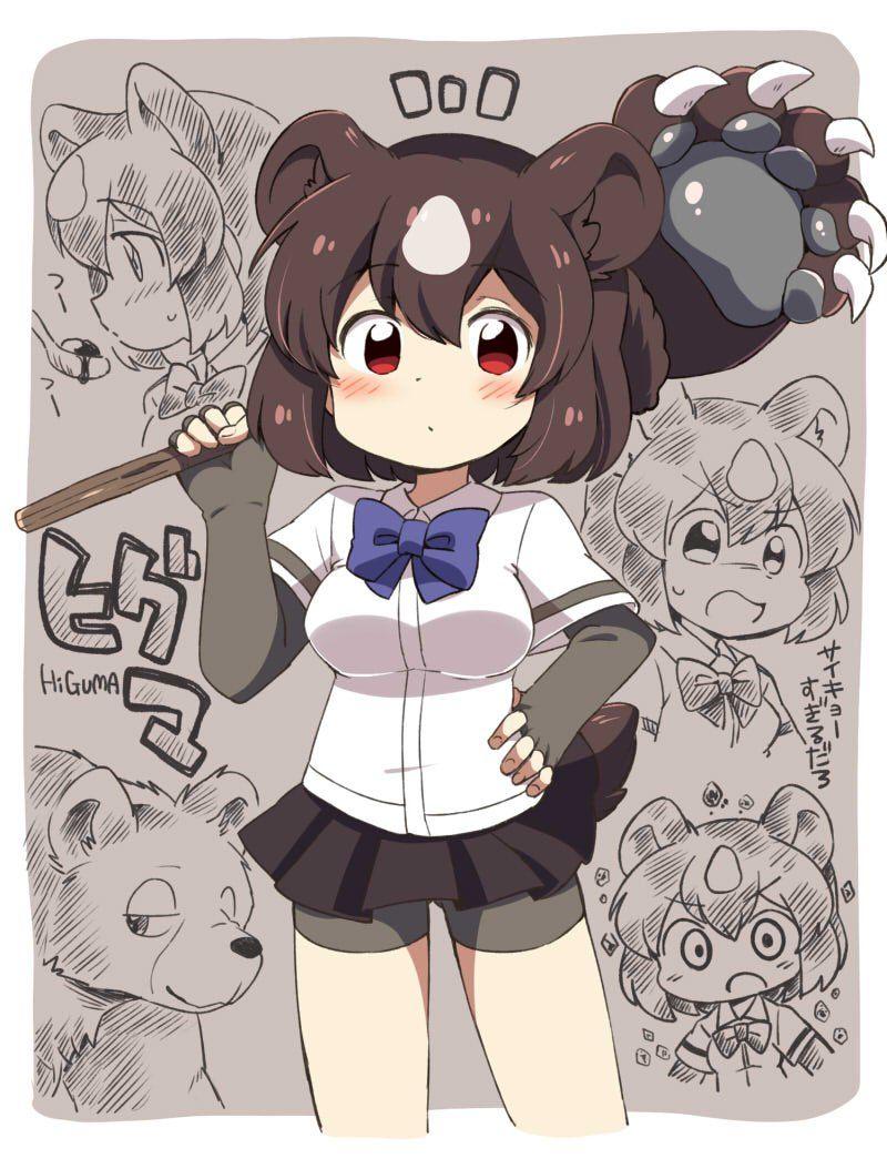 kemono friends アニメの動物 カワイイアニメ アニメのネコ