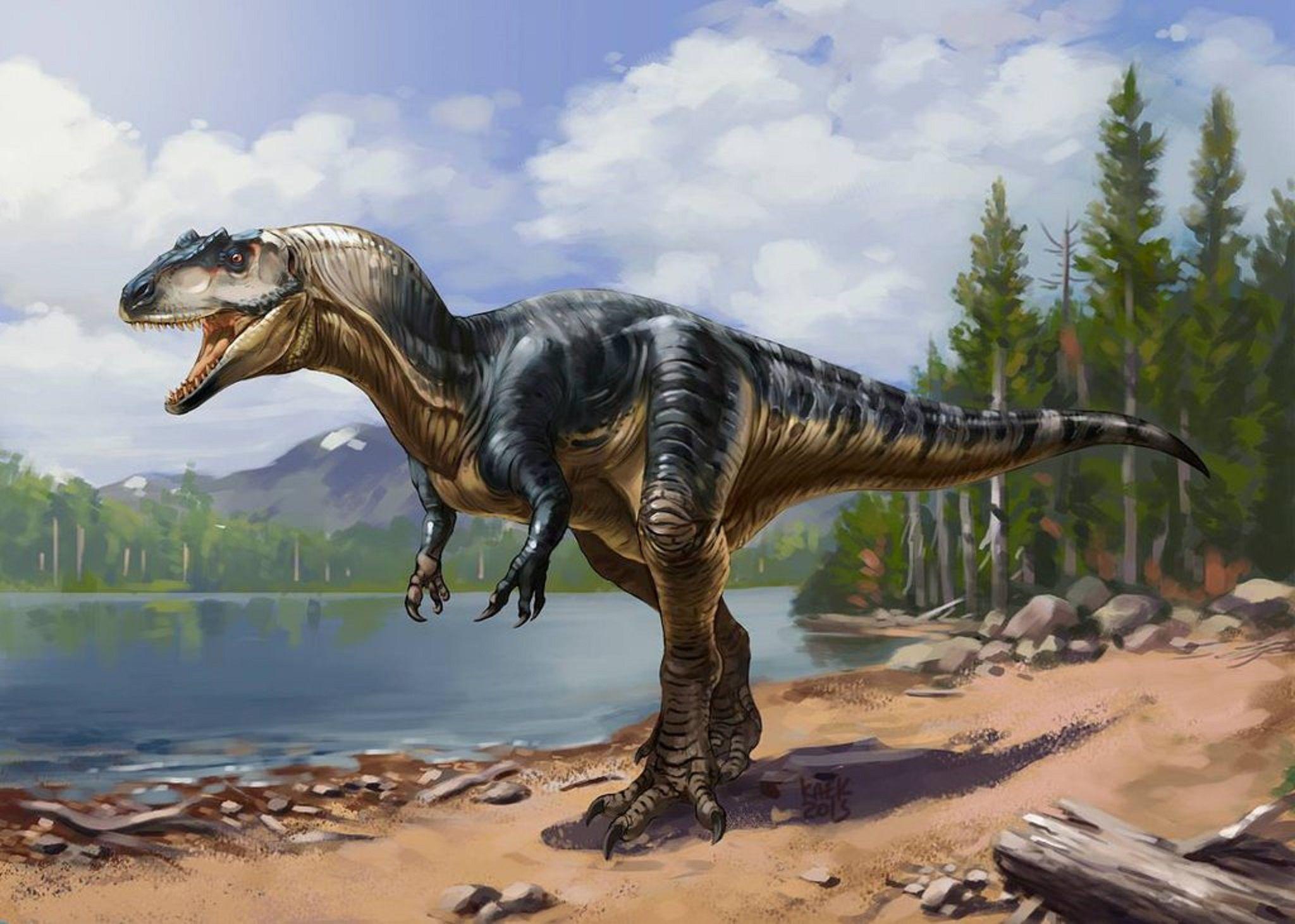 "Art illustration - Dinosaurs - Allosaurus: (""strange ... Extinct Species Dinosaurs"