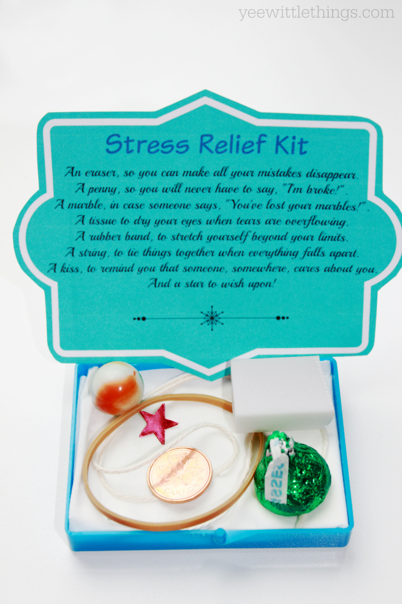 DIY Stress Relief Kit | Stress relief, Gift and Craft