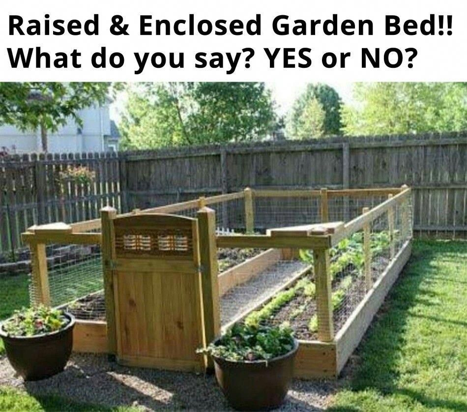 Raised and enclosed garden bed -   22 enclosed garden beds
