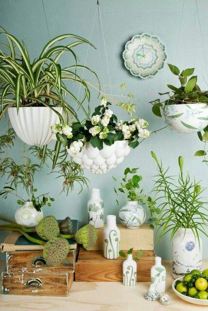 suspensions pour vos plantes urban gardening pinterest suspension plantes et plante interieur. Black Bedroom Furniture Sets. Home Design Ideas