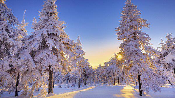 Winter Sunrise Winter Landscape Winter Pictures Winter Wallpaper