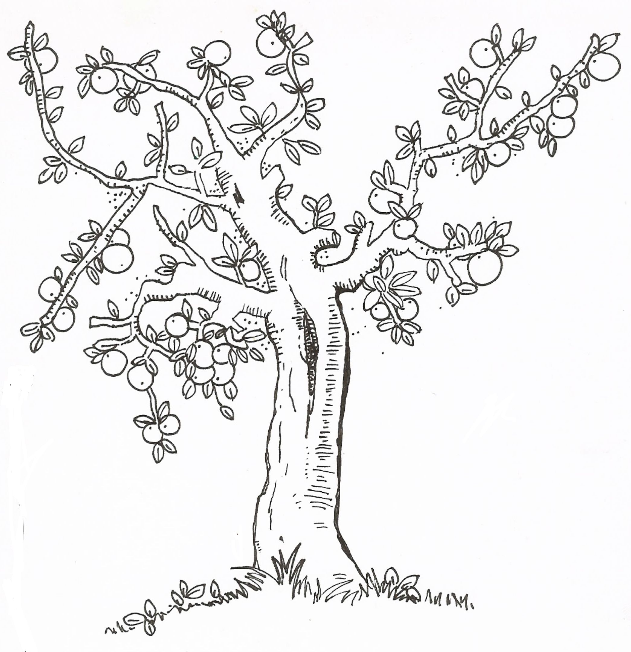Coloring pictures of flowers and trees - Lesson 10 I Am Thankful For Trees Plants And Flowers I Got This Idea Off